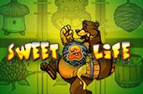 Слоты Медведь и Пчела в казино Вулкан Удачи