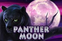 Играть в казино Вулкан Panther Moon