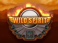 Wild Spirit – играйте в клубе Вулкан на телефоне